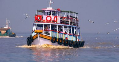 Water Borne Taxis