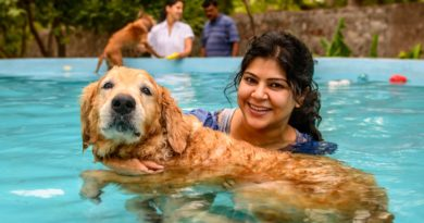 For Urban Nomad & Pets, We The Top Pet Friendly Resorts Around Delhi!