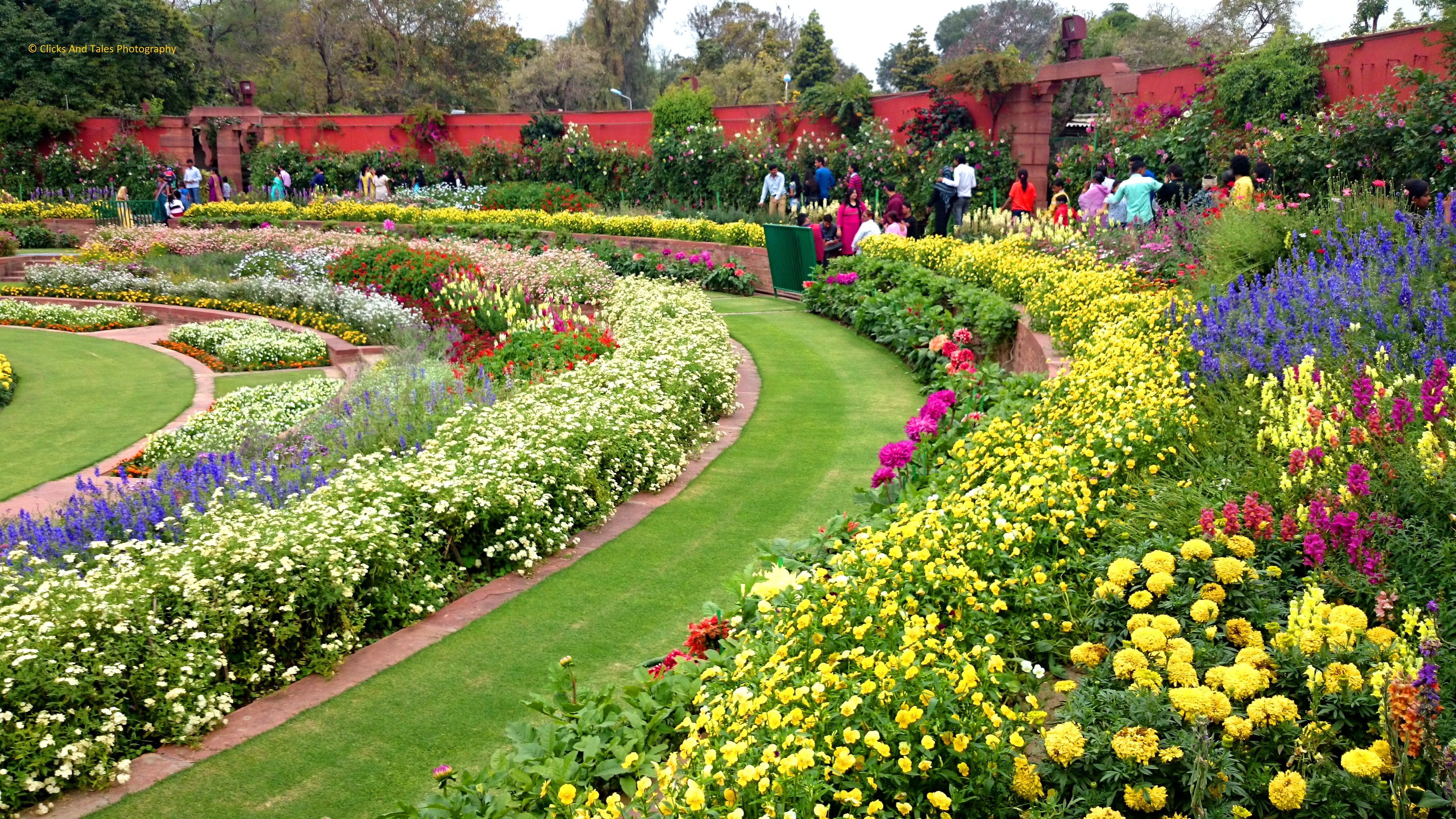 It is time you visit the mughal gardens before they close for Garden pictures