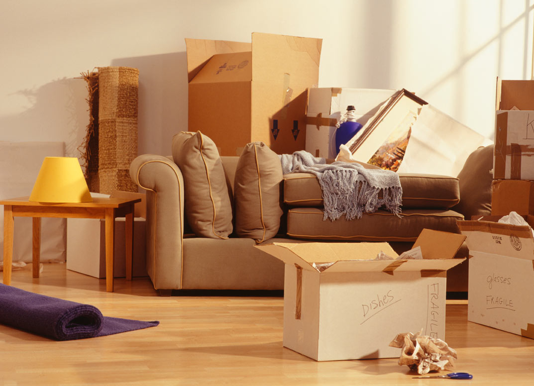 movers and packers in Delhi-NCR