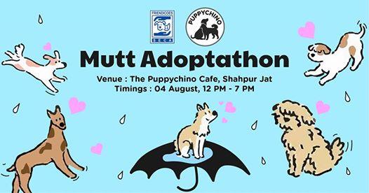 Drench In Some Puppy Love This Seaon- Friendicoes' Mutt Adoptathon